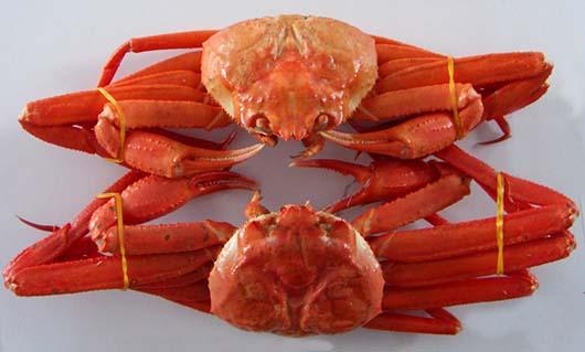 日本紅蟹 抄碼 (FS100SA)